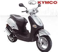 YUP 50 2T EURO II (SF10CA)